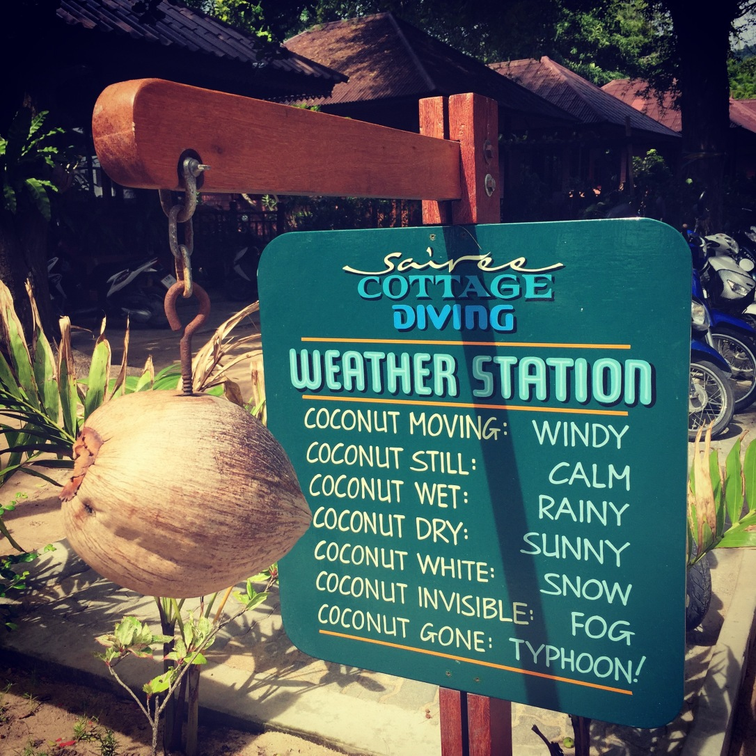 coconut weather station koh tao