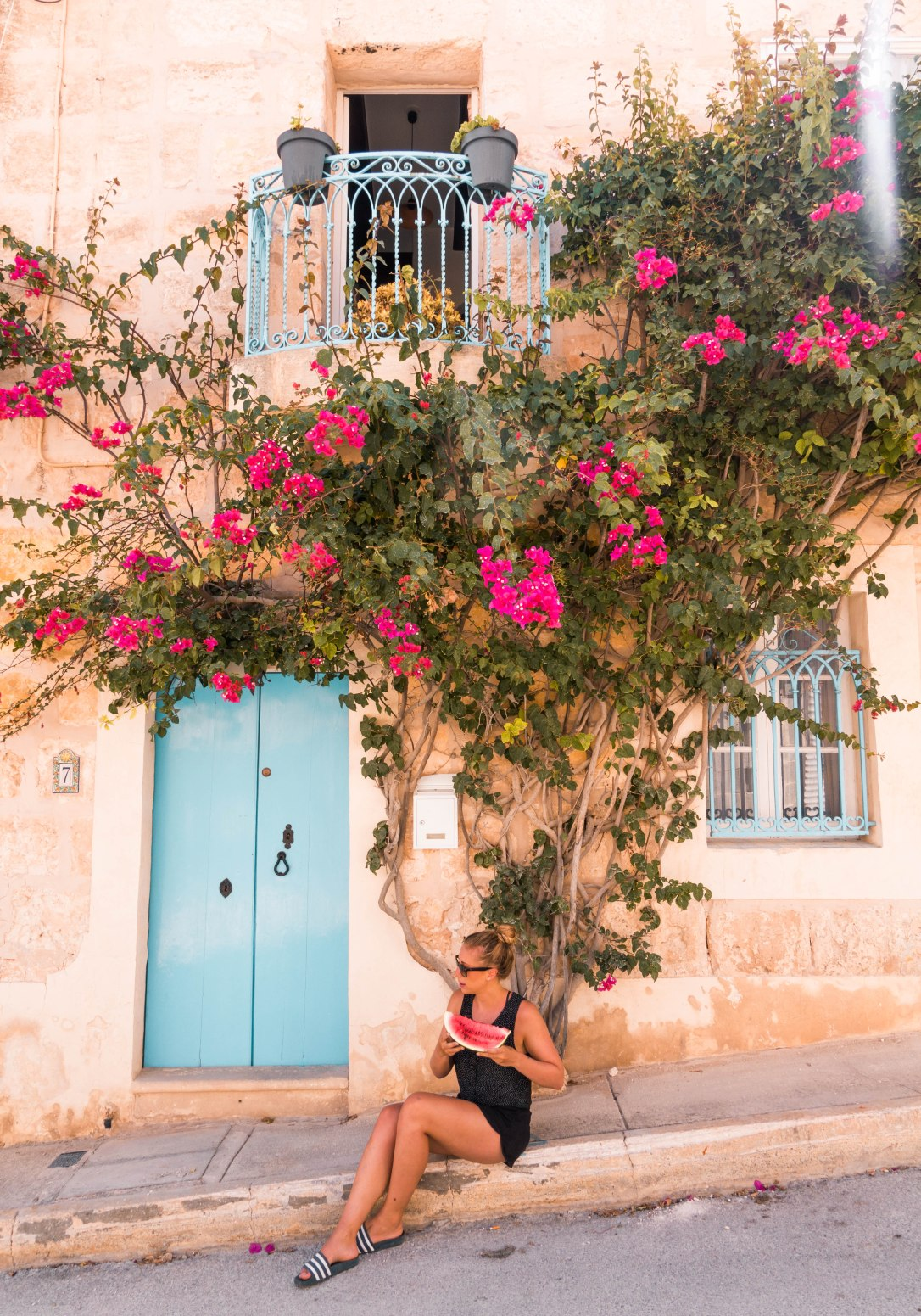 beautiful flowers in Mellieha Malta
