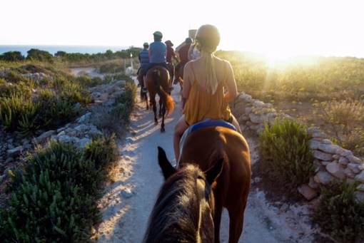 Horseback, Riding, Sunset, Beach