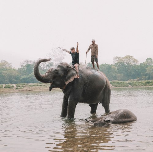 Elephant Bath, Chitwan National Park, Barahi Jungle Lodge, Nepal
