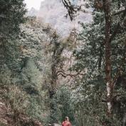 Mountain Trekking, Ghorepani, Poon Hill, Nepal, Jungle, Landscape