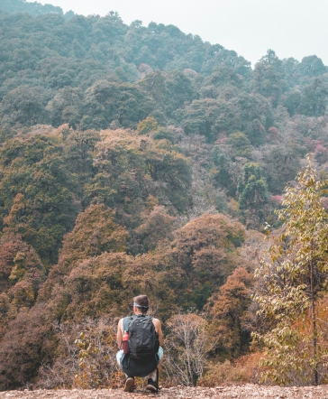 Mountain Trekking, Nepal, Ghorepani, Poon Hill, Views, Landscape, Trees