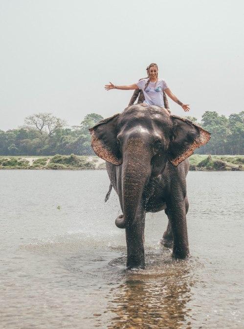 Barahi Jungle Lodge, Nepal, Elephant Bathing, Activity, Adventure