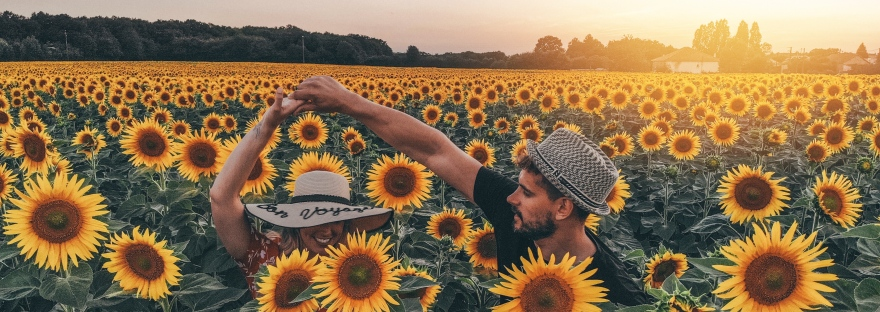 France, Limalonges, Travel, Sunflowers, Beautiful, couple, goals,
