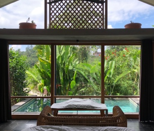Salt and Coconuts, Bali, Ubud, Travel, Amora Boutique Villas, Swimming Pool,