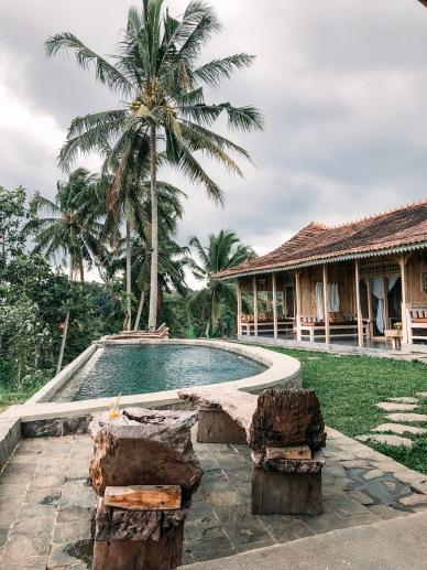 Ubud, Bali, Hotel, Homestay, Salt and coconuts, Perfect, Relaxing, unwind