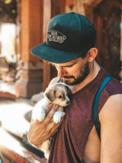find Louis, bali, dog, cute, beautiful, pup,